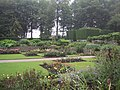 Gardens at Castle Drogo - geograph.org.uk - 920223.jpg