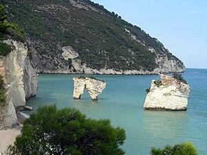 Faraglioni - Faraglioni in Zagare Bay, Gargano National Park, Apulia.