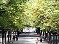 Geneve parc Bastions 2011-08-05 13 13 52 PICT0108.JPG