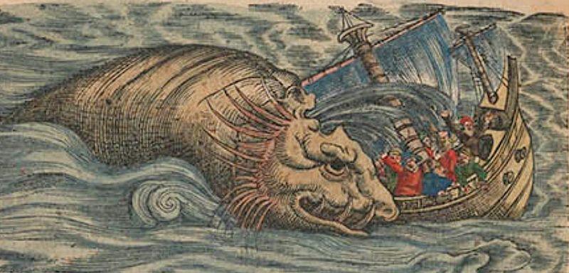 File:Gesner, Conrad — Historia animalium 1563 — Seite 97 recto 2. Abb.jpg