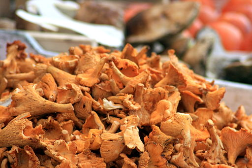 Girolles au marché d'Orange