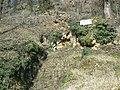 Gisement de la Gravette, le site des fouilles..JPG
