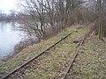 Gleisreste zwischen Altrhein und Stinkkanal - panoramio.jpg