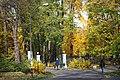 Gliwice - Park Chopina - panoramio (4).jpg