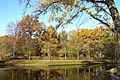 Goldfischteich (Großer Tiergarten) - Berlin, Germany - DSC09429.JPG