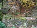 Gorges de la Lemme 002.jpg