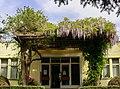 Gradina Botanica (8735757213).jpg