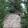 Grand Lake, CO 9-2012 (8054222730).jpg
