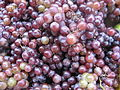 Grapes in market.jpg