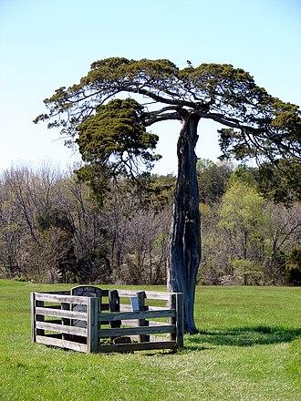 Appomattox Court House National Historical Park cemeteries - Image: Gravesite of Lafayette Meeks