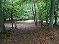 Great Wood - geograph.org.uk - 1546468.jpg