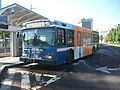 Greater Bridgeport Transit 5314.jpg