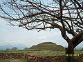 Guachimontones Ruinas Arqueologicas Naturaleza.JPG