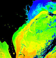 The Gulf Stream is orange and yellow in this representation of water temperatures of the Atlantic. Source: NASA.