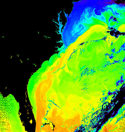 Surface temperature of the sea off the east coast of North America. The corridor in yellow gives the position of the Gulf Stream Gulf Stream water temperature.jpg