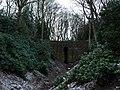 Gully in Troughabolland Wood, Shibden Park - geograph.org.uk - 1747115.jpg