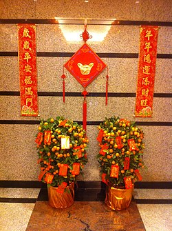 HK Mid-levels Chinese New Year decoration plants Jan-2012.jpg