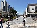 HK SYP 西營盤 Sai Ying Pun 香港 中山紀念公園 Dr Sun Yat Sen Memorial Park February 2020 SS2 06.jpg