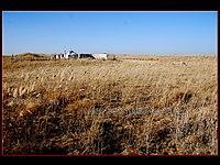 Hanggin, Ordos, Inner Mongolia, China - panoramio - 18600025200.jpg