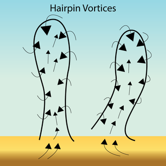 Coherent turbulent structure - Image: Haripins