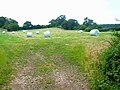 Hay meadow and hay bales - geograph.org.uk - 198842.jpg