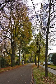 Hellbrunner Straße Salzburg 01.jpg