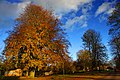 Helsingborg 2012-11-04 (8267854582).jpg