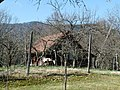 Hiše na Srednji Dobravi 33.jpg