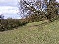 Hickmerelands Lane Field - geograph.org.uk - 1225609.jpg