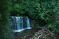 Hoggs Falls.jpg