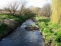 Hogsmill River - geograph.org.uk - 151421.jpg