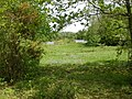 Holmsley Gravel Pit Nature Reserve - geograph.org.uk - 1298298.jpg