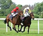 Horse-racing-4.jpg
