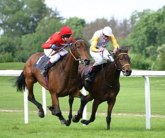Race horses competing on turf (grass racetrack) in Germany. Most races in Europe are run on turf, while most races in North America are run on dirt. Horse-racing-4.jpg