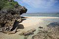 Hoshizuna-no-hama Iriomote Island00s3s4592.jpg