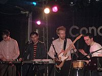 Hot Chip by Mike Mantin.jpg