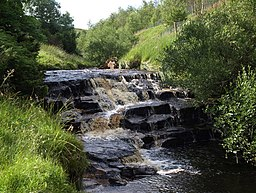 Hunder Beck Waterfall - geograph.org.uk - 1407512.jpg