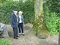 IJzeroerkei in tuin heemhuis Deurne.jpg