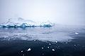 Icebergs, Antarctica.jpg
