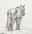 Illustration by Jean Bernard, digitally enhanced by rawpixel-com 144.jpg