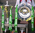 Ireland 2009 6 nations triple crown.jpg