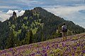 Iron Mountain Mark Gorzynski IMG 2222.jpg