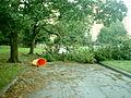 Isabel RVA Monroe Park damage-2.jpg