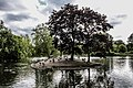 Island in lake.jpg