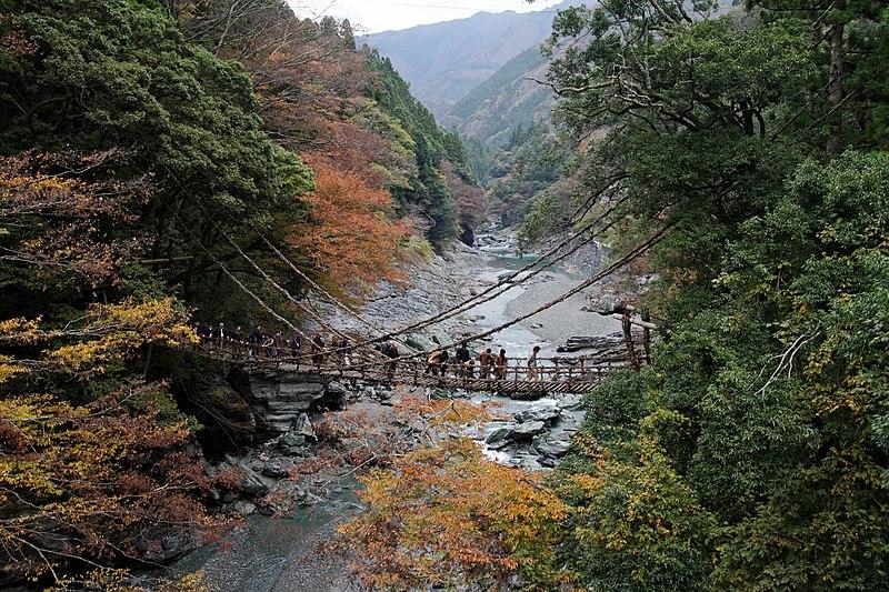 File:Iya vine bridge-1.jpg