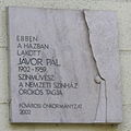 JávorPál Pasaréti8.jpg