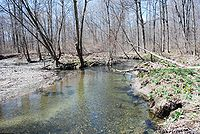 Jackson Creek3.JPG