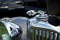 Jaguar (9601239775).jpg