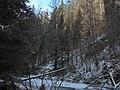 Január v Prielome - panoramio.jpg