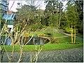 January Frost Botanic Garden Freiburg - Master Botany Photography 2014 - panoramio (17).jpg